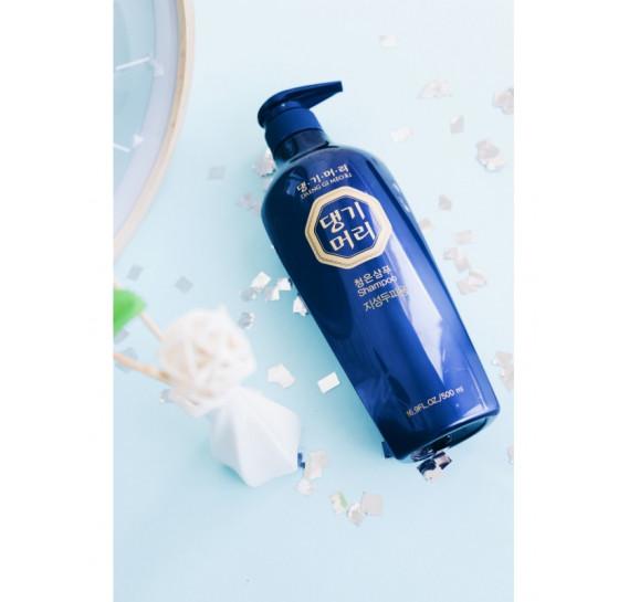 Тонизирующий шампунь для повреждённых волос Daeng Gi Meo Ri ChungEun Shampoo For Damaged Hair 500 мл